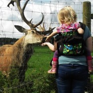Babywearing - Not Just for Babies!